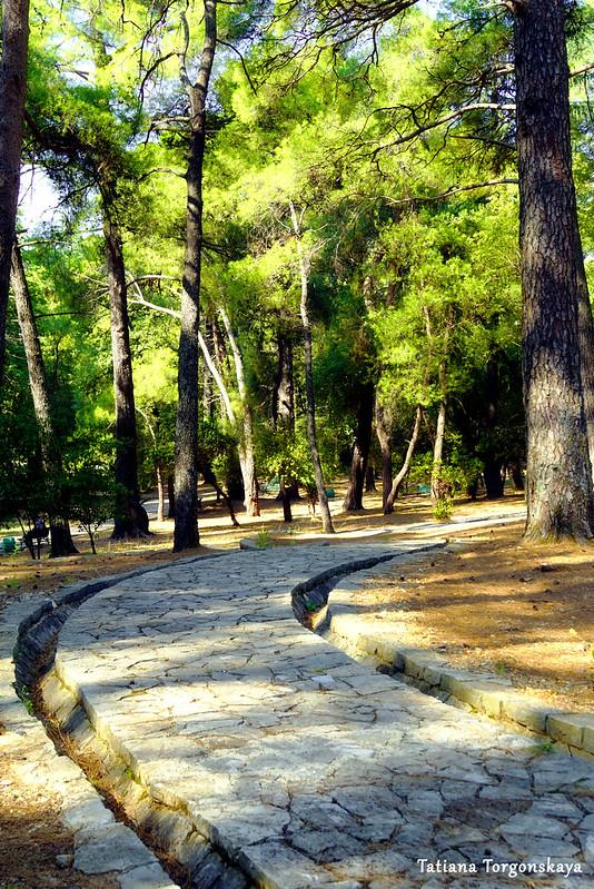 Прогулочная дорожка в парке Тивата