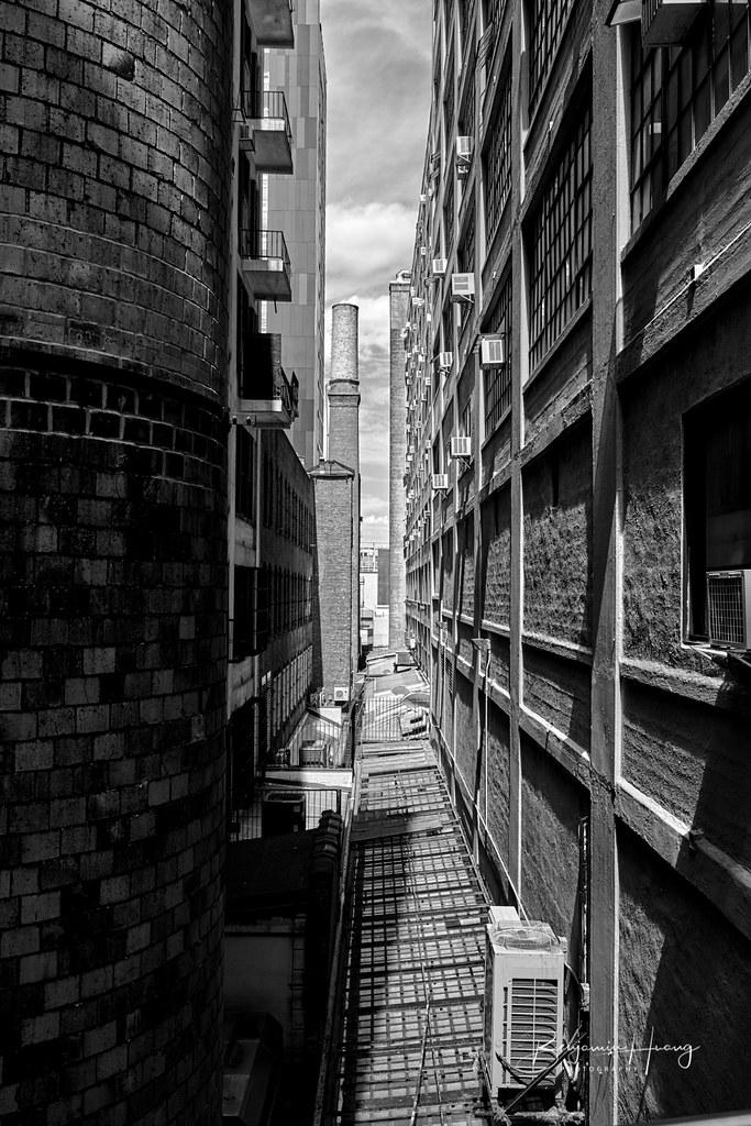 NYC Concrete Jungle
