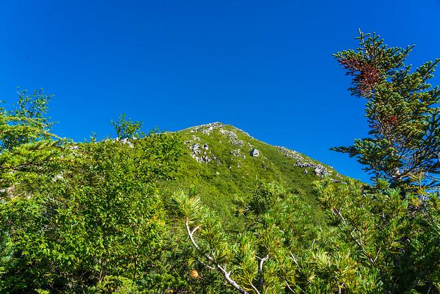 前常念岳を見上げる