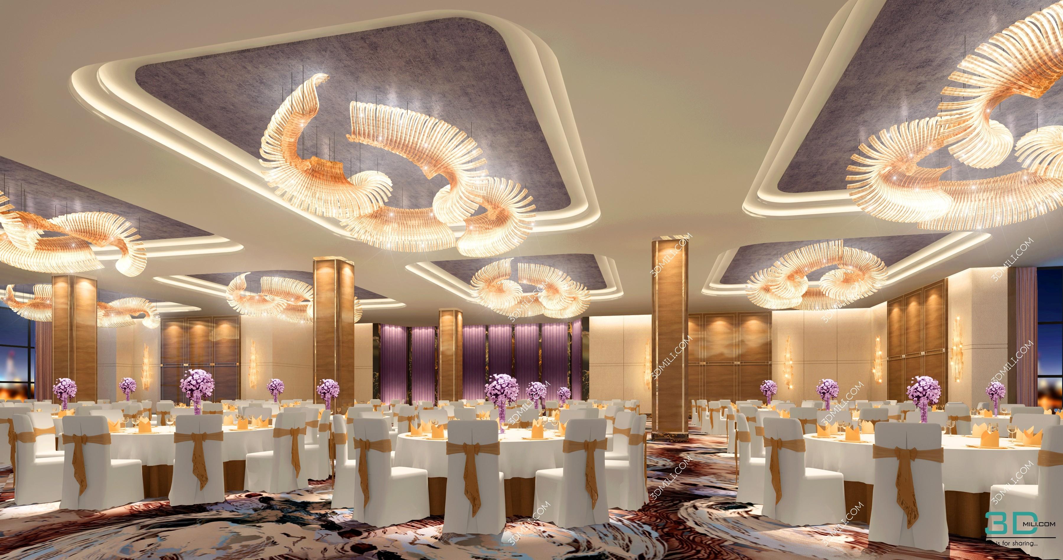 Album for Hotel - Banquet, Hall, Bathroom, Lobby, Corridor