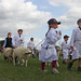 Sheep farmers in training