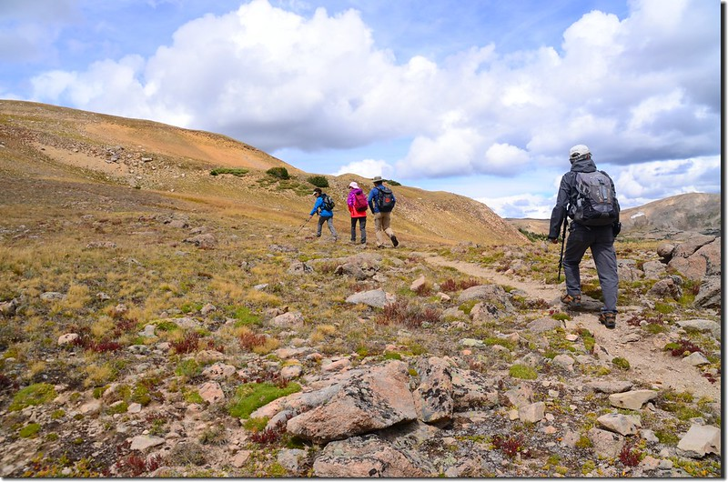 Continental Divide Trail (49)