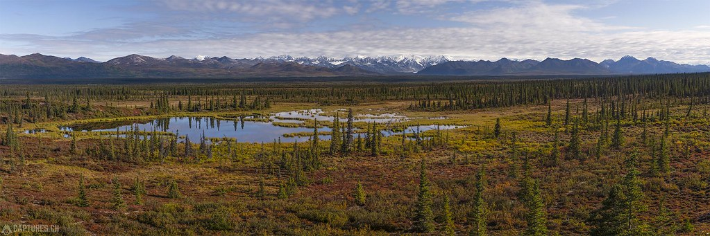 The tarn in the tundra - Alaska