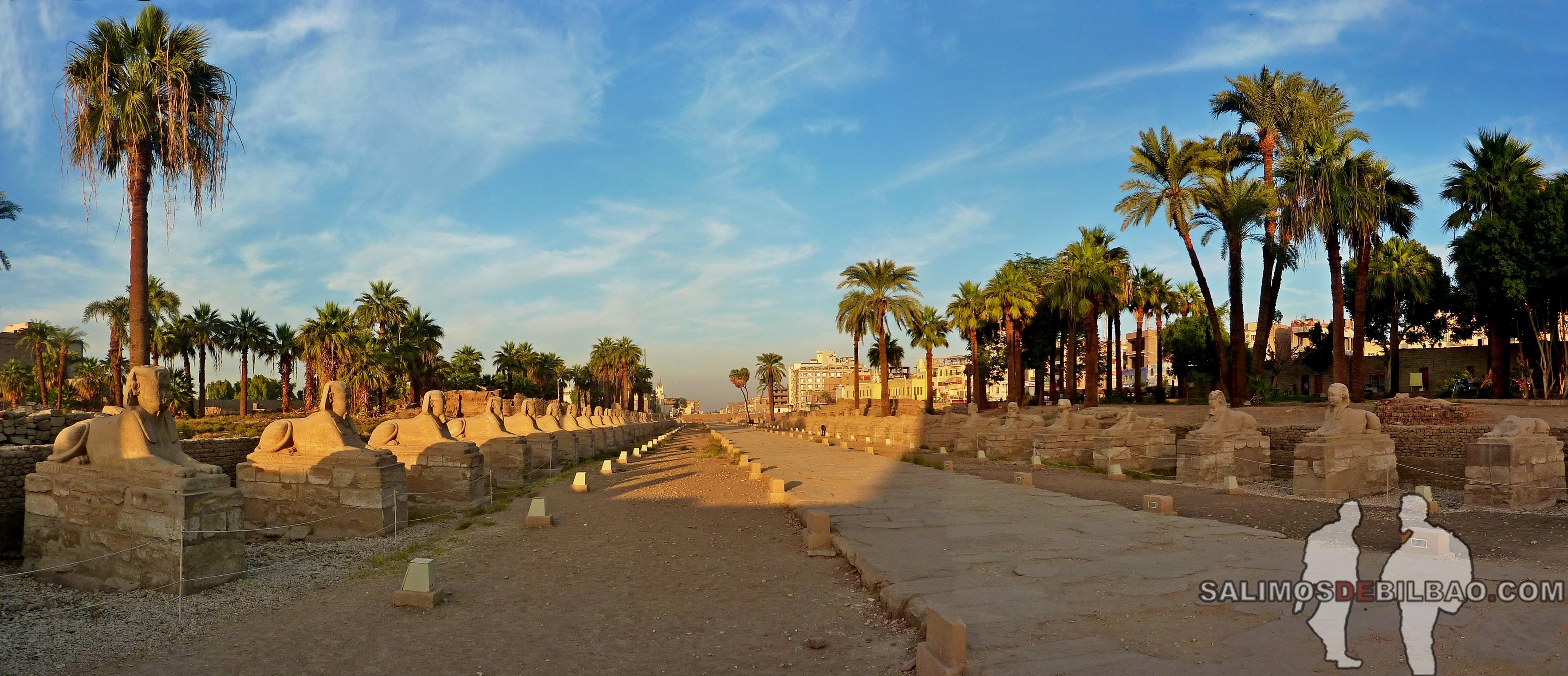 0704. Pano, Templo de Luxor