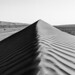 Wahiba Sands desert monochrome, Oman