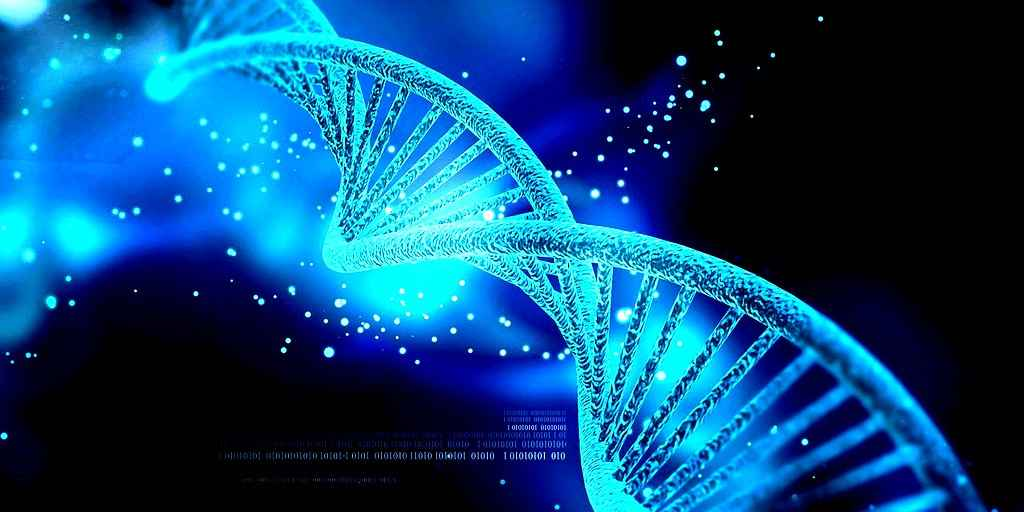 CRISPR-Cas9 : Une nouvelle technique qui limite les mutations