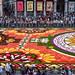 2 Brussels Flower Carpet 2018 - Bruxelles 2018 Tapis de fleurs by A_Decostre