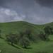 Creston hills