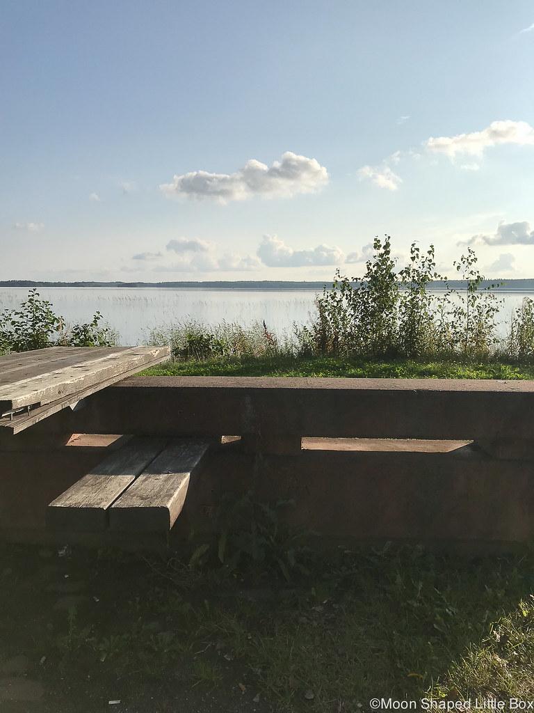 Kuorinka, kesä 2018, kuoringan ranta