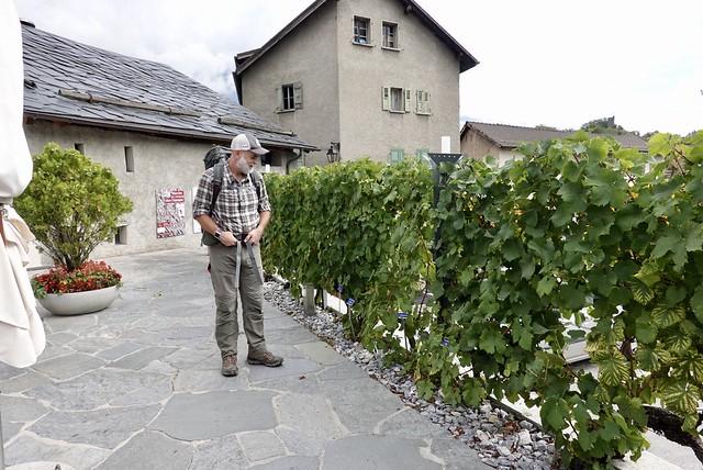 Chris checks out the varietals at the Chateau du Villa