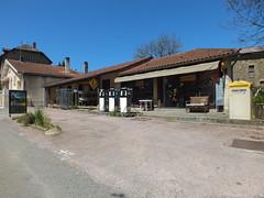 Gorses - Commerce (bourg) - Photo of Montet-et-Bouxal