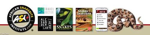 se7en-13-Sep-18-African SnakeBite Institute