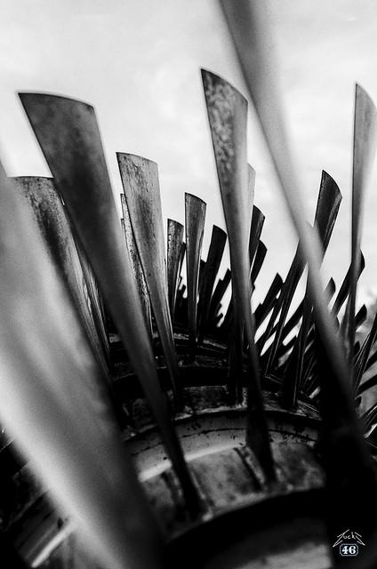 Blade forest