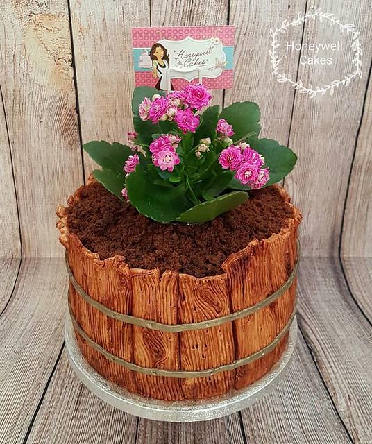 Flower Pot Cake by Honeywell Cakes