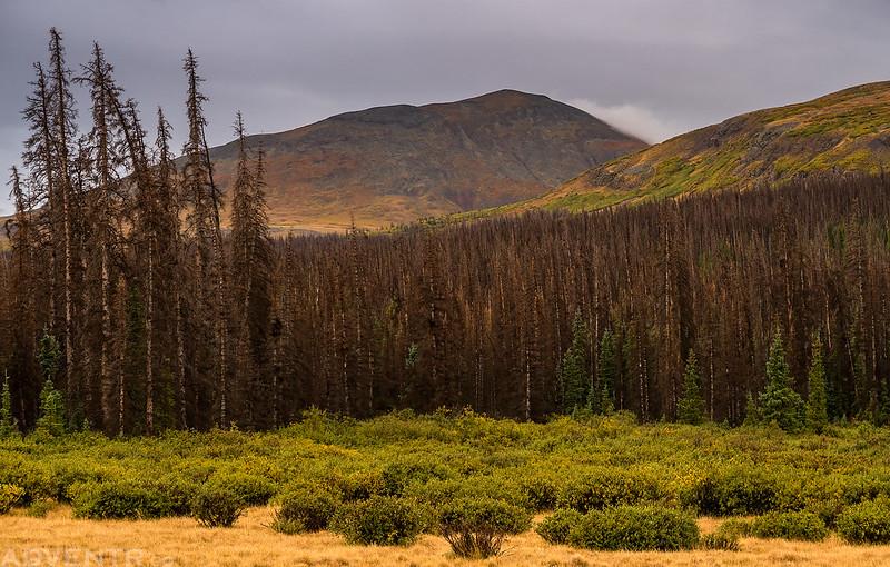 Stewart Peak
