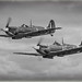 Pair of Spitfires - Black and White