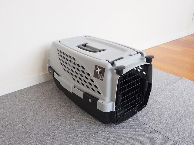 台風を怖がる犬のためのクレート