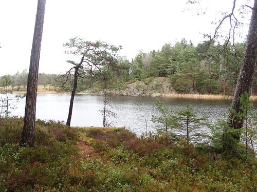 SÖ E54 Sjön Björken3