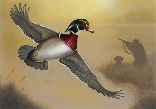 2018 Federal Duck Stamp Contest Entry 107