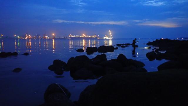 Living rocky shore at Punggol