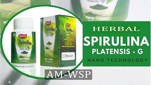 Obat Herbal Penggemuk Badan Spirulina Plantesis