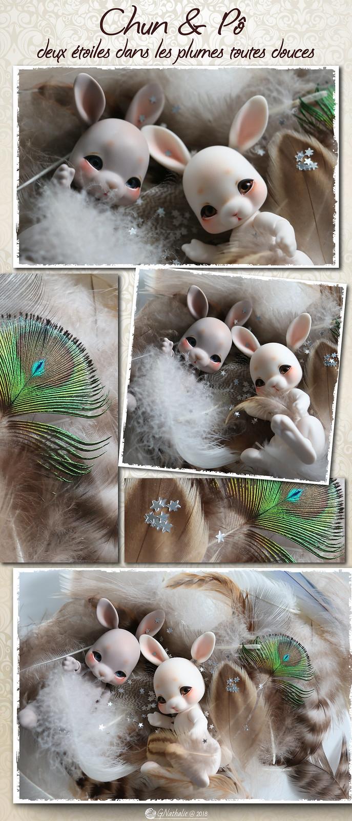 ✰ Ma famille de kitsune (p. 20) - Page 17 42376689470_a1ec22e01e_h