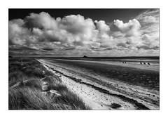 Entre Dunes et Plage de Genêts-Dragey - Photo of Sartilly