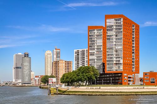 Moderne architectuur langs de Nieuwe Maas - Rotterdam/NL