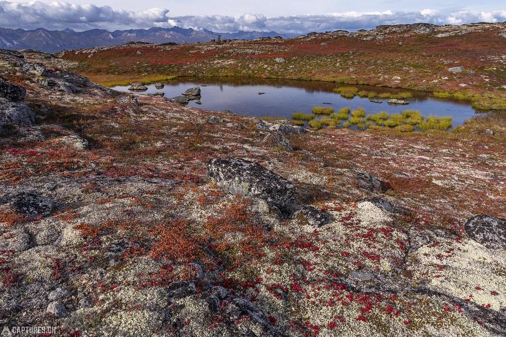 A tarn - Alaska