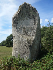 Le menhir dit « La Pierre Longue » près de Pluherlin - Morbihan - Août 2018 - 04