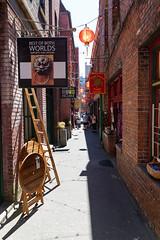 Vancouver island Fan Tall art Alley
