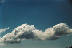gazing into sky