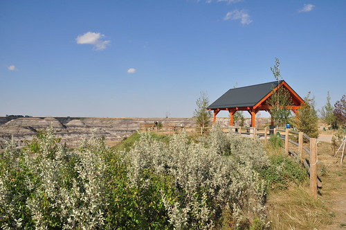 Covered picnic area at Horseshoe Canyon, Alberta