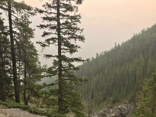 Smokey views from the trail up Sulphur Mountain