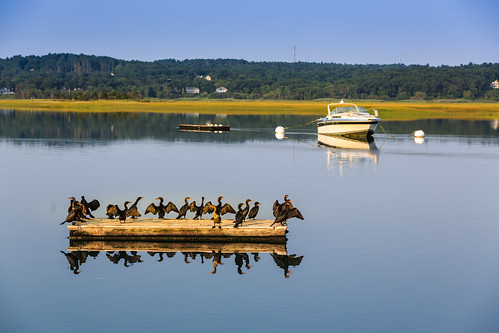 scituate barge boats comorants humarock mass ocean reflection usa