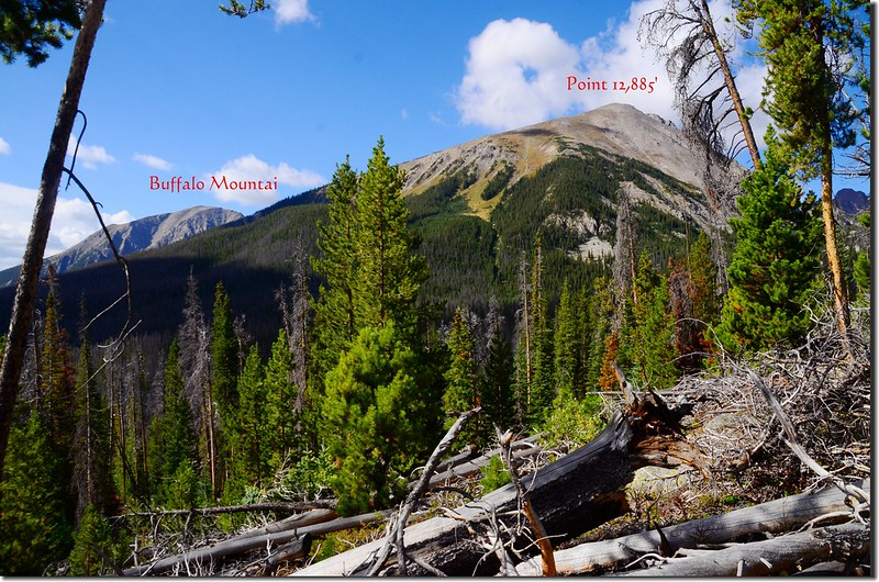 Mountain views from Willow Lakes Trail (7)