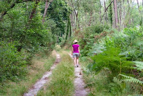 02-Allons au village par la forêt