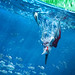 PTERANODON FISHING LEGO DINO by Shobrick