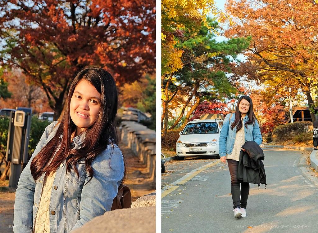 autumn_naksan_park_seoul