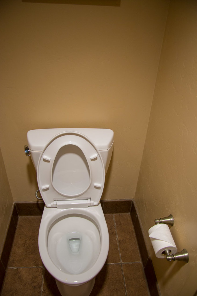 Toilet at Hacienda del sol