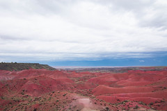 Petrified National Forest, AZ