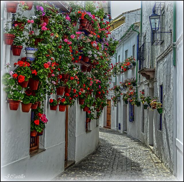 Calle de Priego de Cordoba