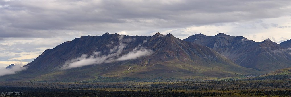 Fall colors at the mountain - Alaska