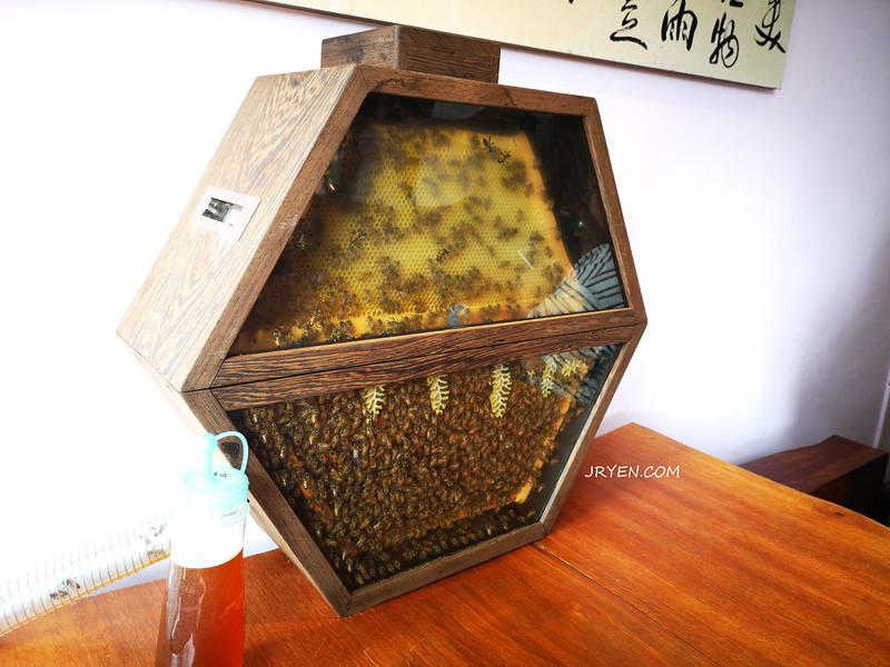 客廳養蜜蜂