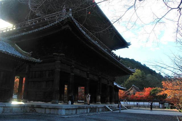 daimon-koyo032