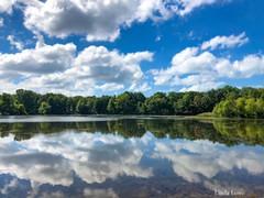 Mirror Image - Veterans Park