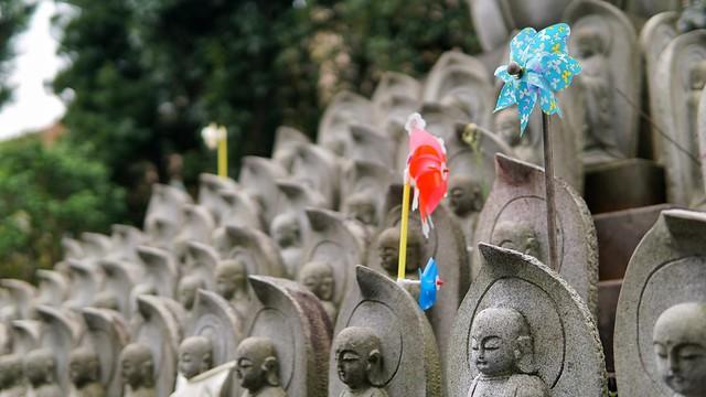 常泉寺(花寺)DSC00665-01