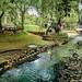 Langsat Park