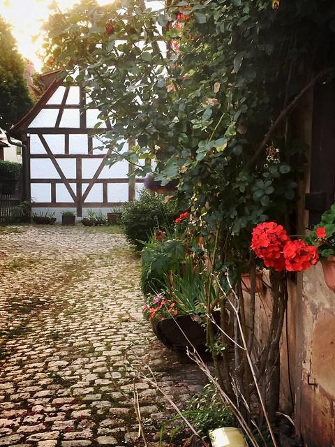 September in Stein