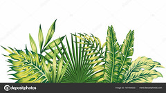 Jungle composition tropical leaves pattern